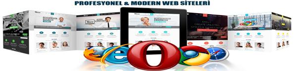yeni-profesyonel-web-tasarim