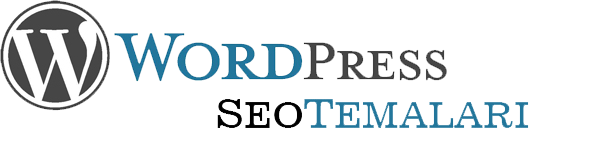 wordpress seo temaları