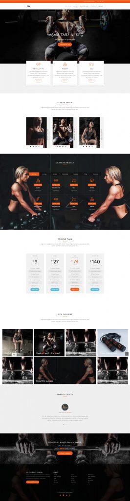 Spor salonu web sitesi örneği