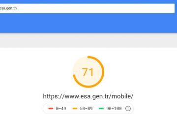 SEO için site hızı