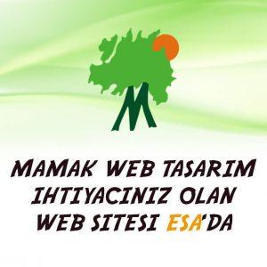 Mamak web tasarım sitesi